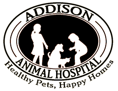 Addison Animal Hospital